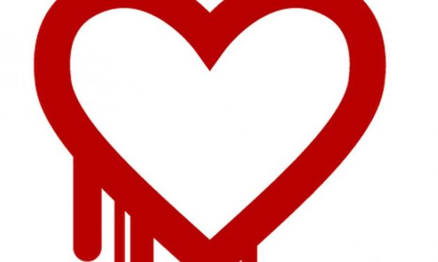 What You Need to Know About the Heartbleed Bug